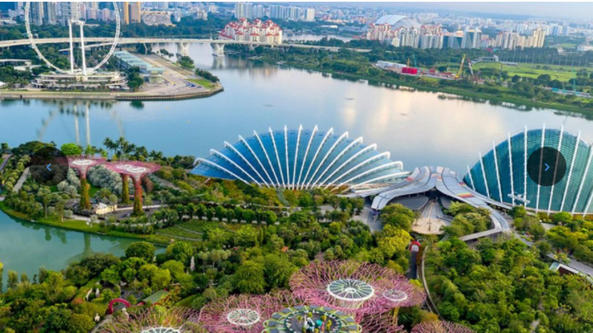 Singapore PKG